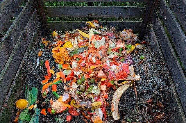 Compost-compostage